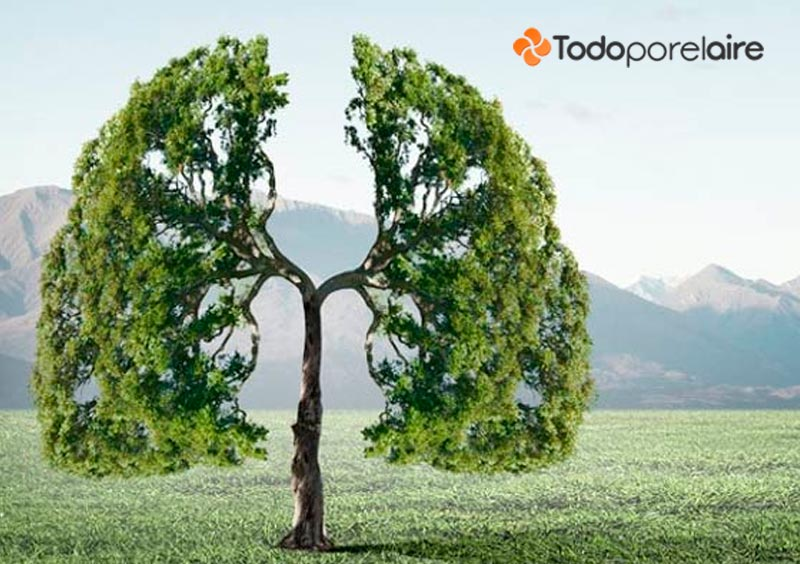 Cuida el aire que respiras para no perjudicar tu salud