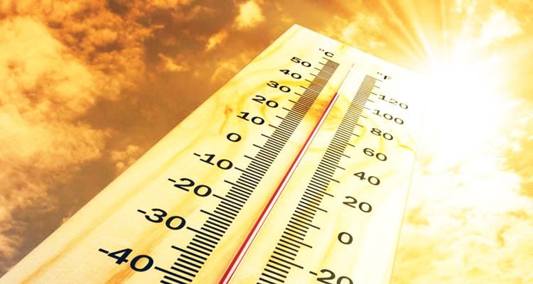 Este verano viene calor, mucho calor…